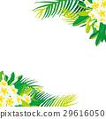 羽毛和棕櫚樹例證 29616050