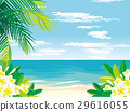 Tropical beach illustration 29616055