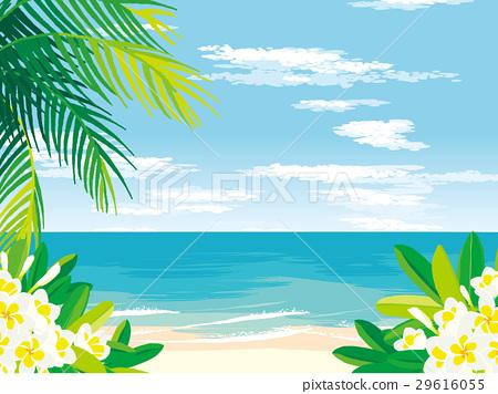 Tropical beach illustration 29616055
