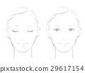 女性的臉線 29617154