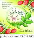 Spring time greeting card vector tulip flowers 29617943