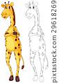 野生生物 动物 长颈鹿 29618269