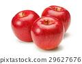 红苹果 29627676