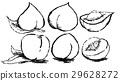 vegetables, vegetable, fruit 29628272