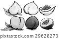vegetables, vegetable, fruit 29628273
