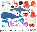 海 大海 海洋 29631221