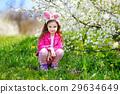 可爱的 开花 樱桃 29634649