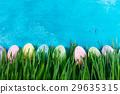 復活節 蛋 春天 29635315