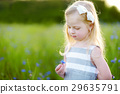 Cute little girl having fun a blooming cornflower field 29635791