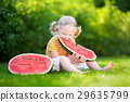 Funny little girl biting a slice of watermelon outdoors 29635799