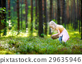 Adorable little girl picking foxberries in the forest 29635946