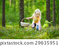 Adorable little girl picking foxberries in the forest 29635951