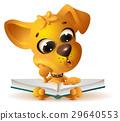 yellow, dog, reading 29640553