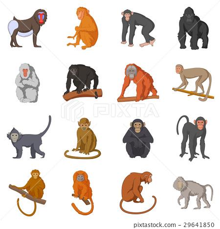 Different monkeys icons set, cartoon style 29641850