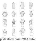 different, cactuses, icon 29642662