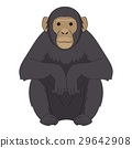 monkey, chimpanzee, cartoon 29642908