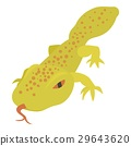 Spotted lizard icon, cartoon style 29643620