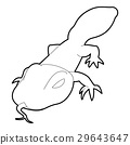 Spotted lizard icon, outline style 29643647