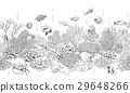 vector coral reef 29648266