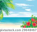 南國 海灘 矢量 29648467