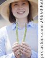 蘆筍 綠蘆筍 女生 29650960