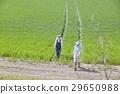 農業 農作 農事 29650988