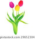 花朵 花 花卉 29652304