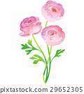 花朵 花 花卉 29652305