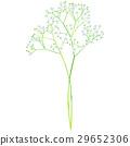 出生花·梅·聖甲蟲 29652306