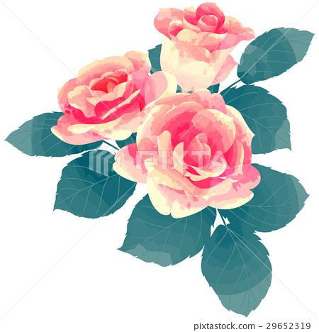 花朵 花 花卉 29652319