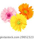 花朵 花 花卉 29652323