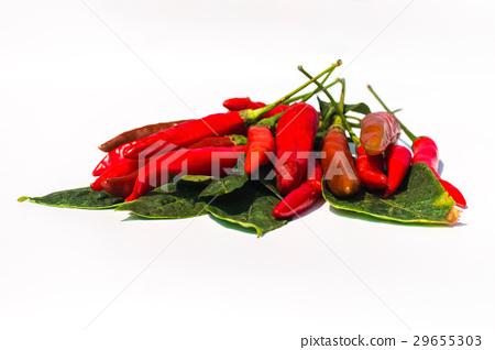 fresh red chilli on white background 29655303