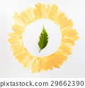 Green leaf in yellow frame closeup 29662390