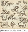 Animals in action, Predators - Hand drawings 29662807