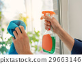 window, glass, housework 29663146