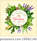 Spices and leaf vegetable poster for food design 29682146