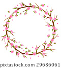 spring, sakura, vector 29686061