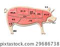 猪肉 猪 肉 29686738