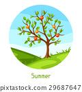 夏天 夏 向量 29687647