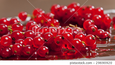 chocolate with red currant 29690920