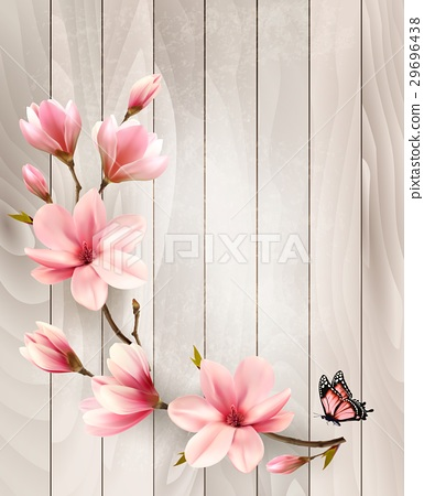Nature spring background with beautiful magnolia 29696438