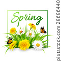 Nature spring background with grass, flowers 29696440