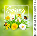 Nature spring background with grass, flowers and b 29696441