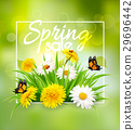 Spring sale background with flowers and butterfly. 29696442