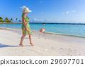 Flamingo beach. Aruba 29697701