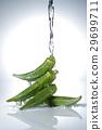 Fresh Food 29699711