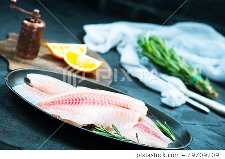 fish 29709209