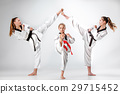 The studio shot of group of kids training karate 29715452