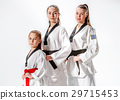 The studio shot of group of women posing as karate 29715453
