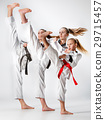 The studio shot of group of kids training karate 29715457